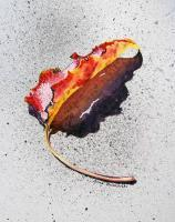 Available_Still Life - Leaf On Fire - Watercolor
