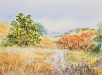 Available_Landscape - California Parks - Briones Park In Martinez - Watercolor
