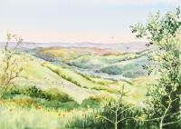 Landscapes - Inspiration Point Orinda California - Watercolor