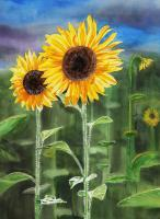 Flowers - Landscape With Sunflowers - Watercolor