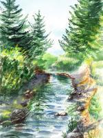 Landscapes - Forest Creek - Watercolor
