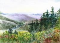 Landscapes - Redwood Creek National Park - Watercolor