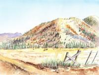 Landscapes - Californian Landscape Saint John Ranch Bald Mountain View - Watercolor